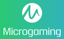 Microgaming Software Provider